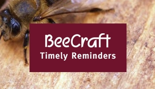 Bee Craft Timely Reminder – 5th September 2018