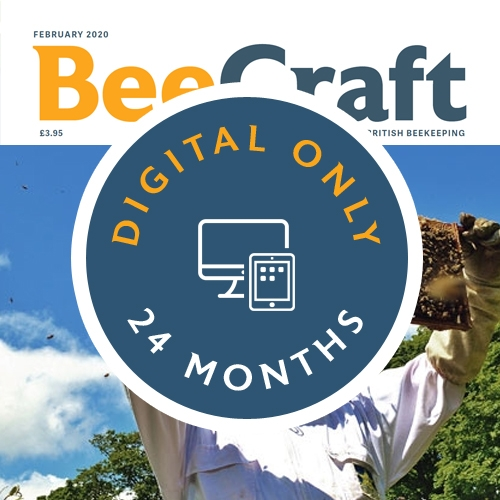 Bee Craft Digital Subscription | 24 months