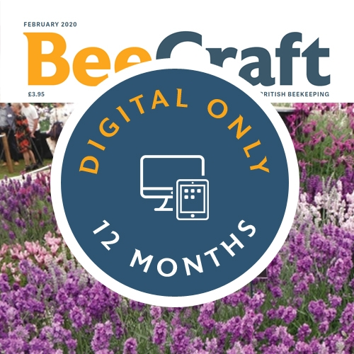 Bee Craft Digital Subscription | 12 months