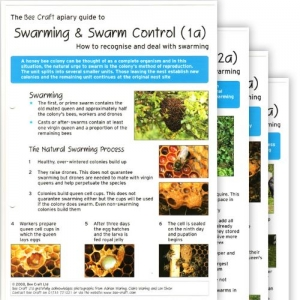 A Guide to Swarming and Swarm Control Cards