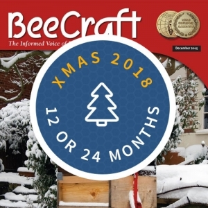 Bee Craft Christmas 2018 Gift Subscription