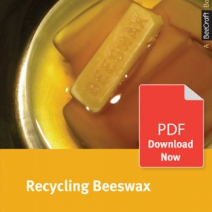 Recycling Beeswax - Bee Craft Digital Download Booklet